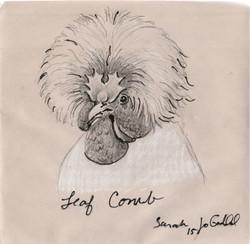 Chicken Scan Leaf Comb