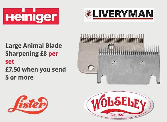 Horse blade sharpening