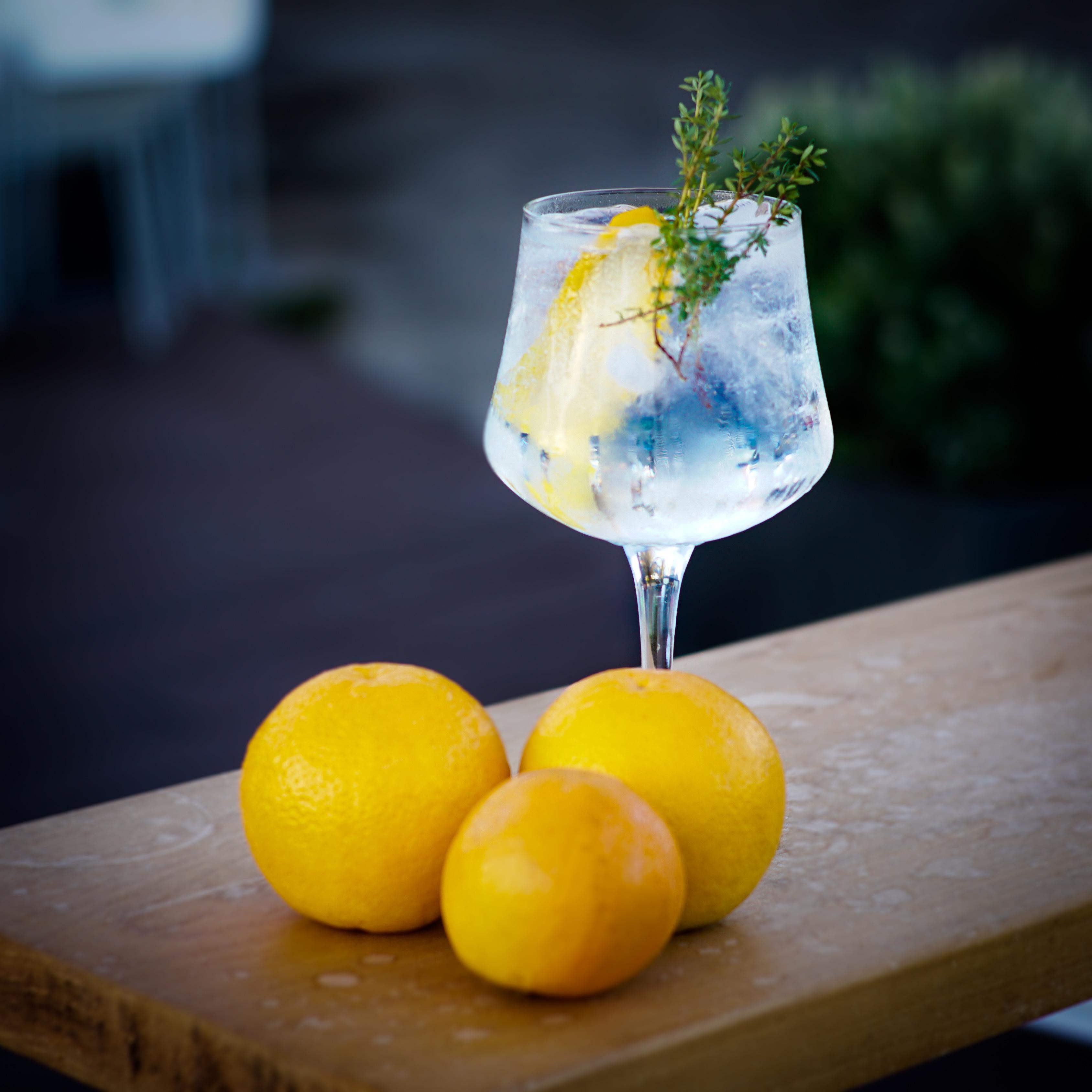 Jantares de Grupo - Gin Tónico