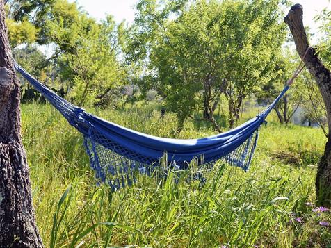Monte rosa hammock.jpg