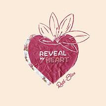 Reveal my heart Artwork.jpg