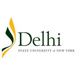 Delhi 300px