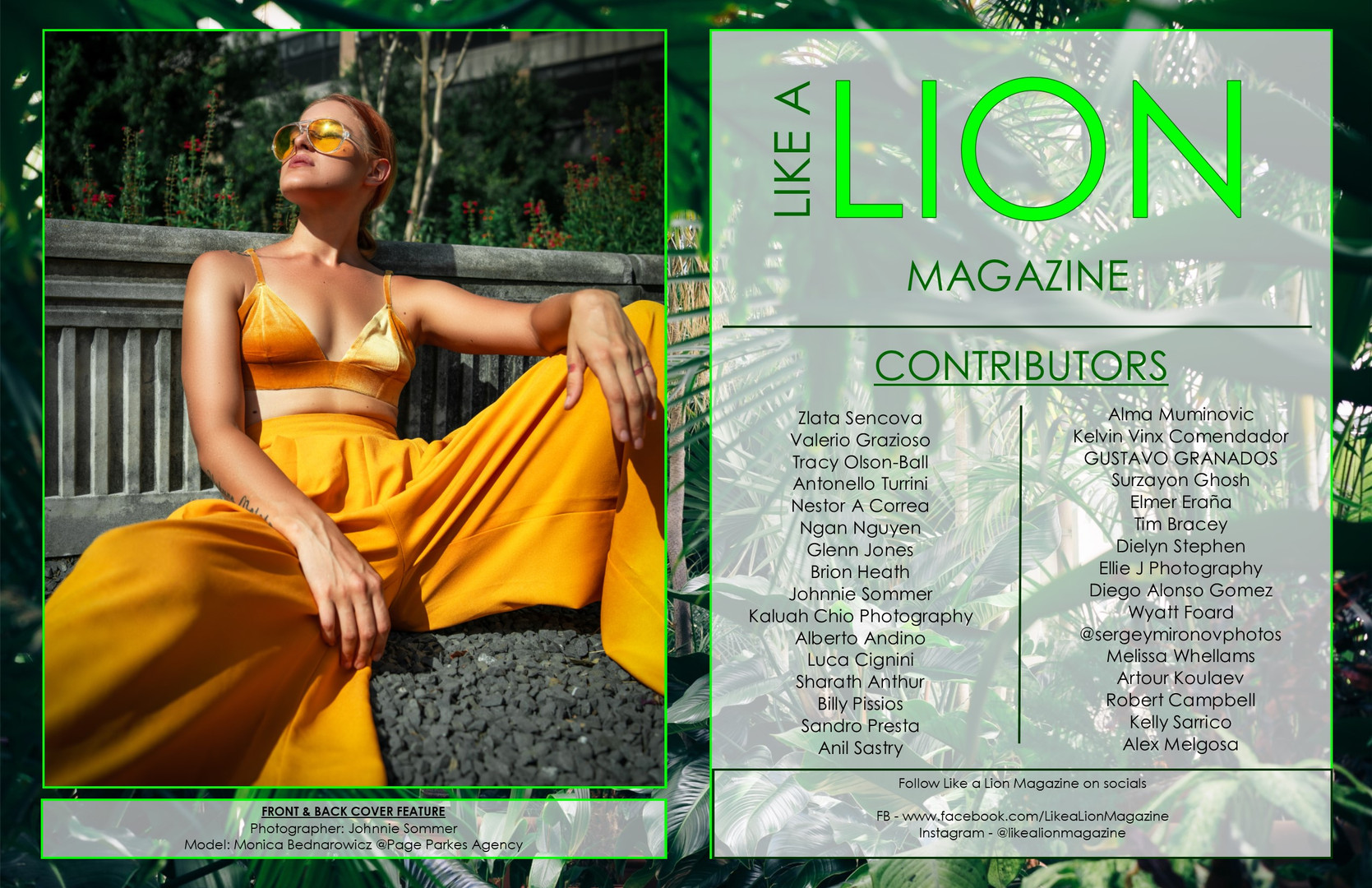 Like A Lion Magazine - October 2019 BOOK 3