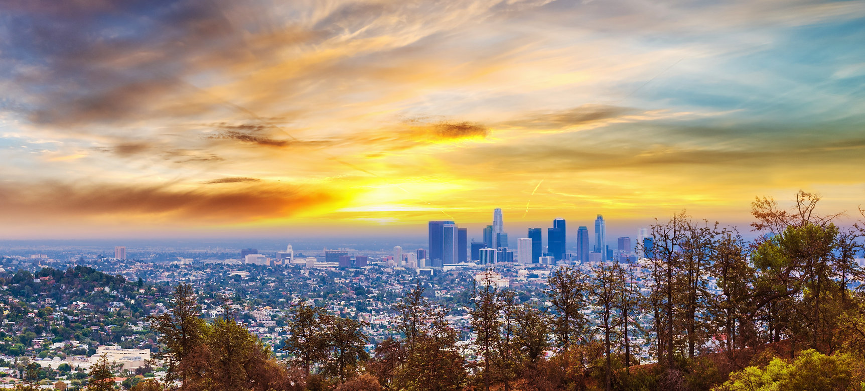 Los Angeles gekauft.jpg