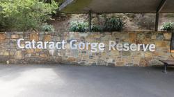 Cataract George