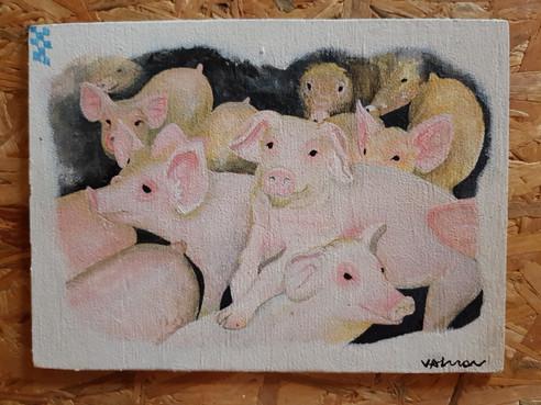 Porcinhos.jpg