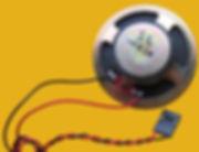 PC-Speaker_IMG_8161_(cropped).JPG