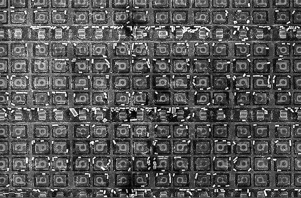 800px-1886VE10-SEM-HD_edited.jpg