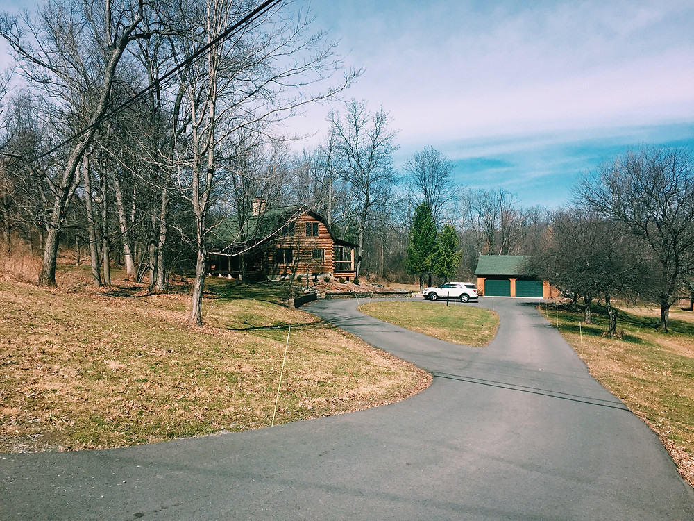 THE CABIN IN THE SPRING