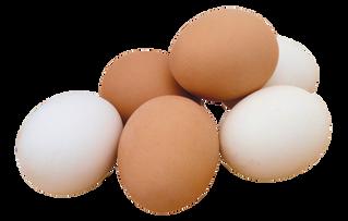 """Egg & Oatmeal """"Bread"""""""
