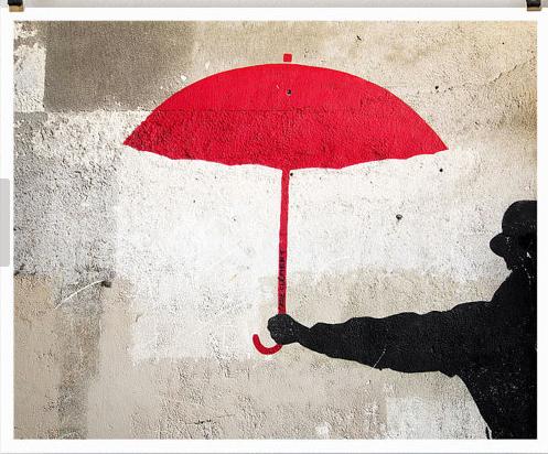 Red Umbrella Babies, It's happening!