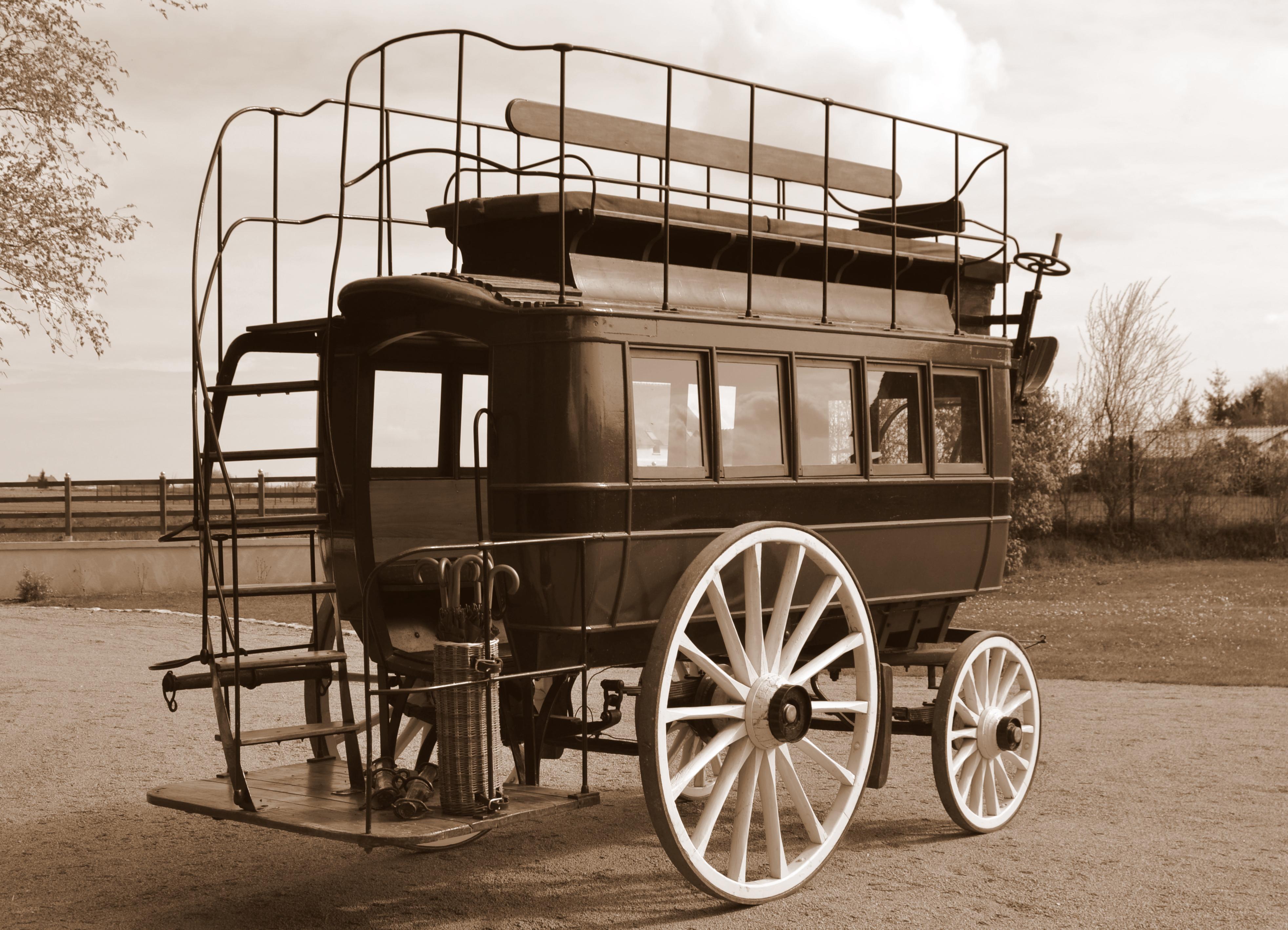 omnibus (1)