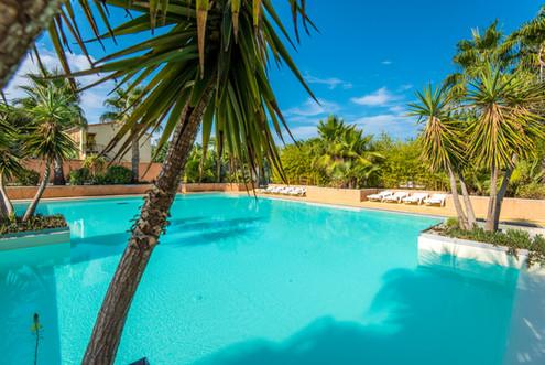 vue piscine jardiniere yukka.jpg