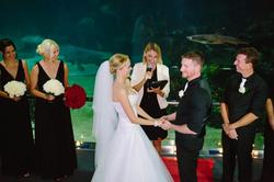 Seaworld Wedding