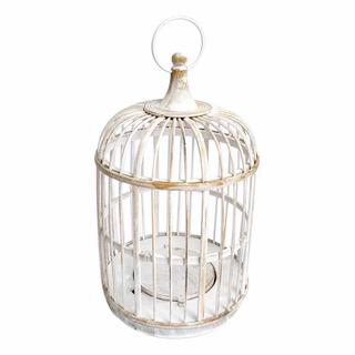 Tweetie Birdcage