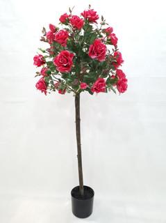 Rose Bush Tree