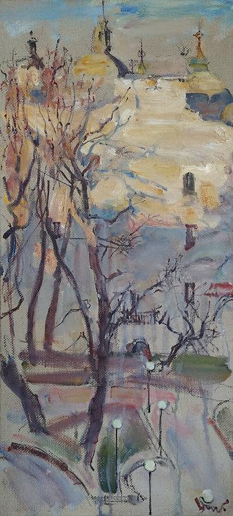 Evening on Petrogradka by YURIY USHAKOV