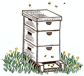 beehive_clipart.png