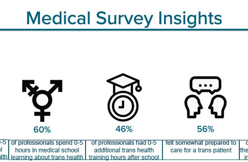 These are insights from my survey with professionals about their experience with trans patients.
