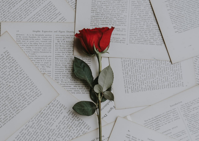 Photo by Annie Spratt. Rose over written word, symbolizing the focus on romantic stories.