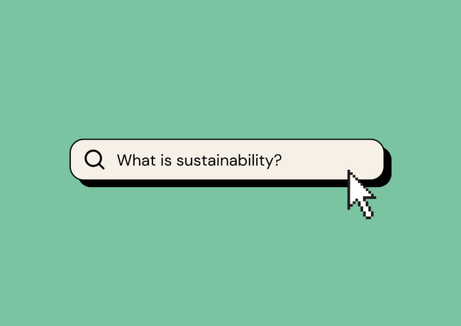 Example carousel post primary image; the audience can swipe through to see the curated definitions of sustainability