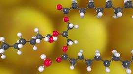 Molekül Animation