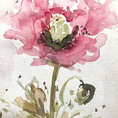 'Poppy 1'