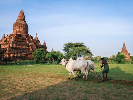 Holy Week Offering: Partners Myanmar