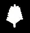 white palm.png