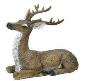 Buck - Laying 38 x 37.JPG