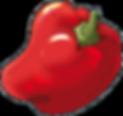 Jeu de société Amix Lotologik fruits et légumes