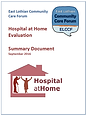 hospital at home summary doc.png