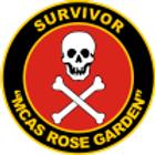 """MCAS Rose Garden SURVIVOR 4"""" Window Decal"""
