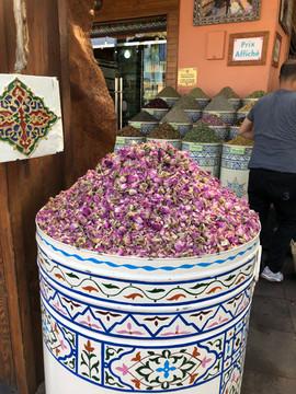 Morocco Rosetea