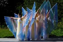 Les ailes d'Amélie
