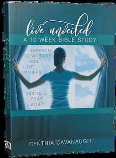 unveiled-book-cynthia-cavanaugh.png