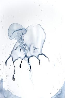 Gorgoni (Medusa)