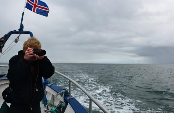 Iceland390.jpg