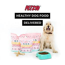 FREE Petzyo Dog Food Sample