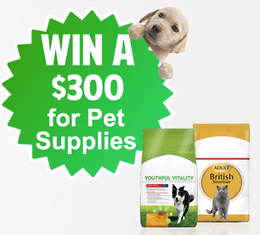 WIN Pet Free Pet Supplies