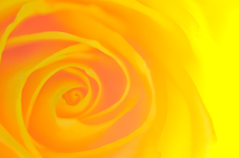 The Meaning of Colors: YELLOW