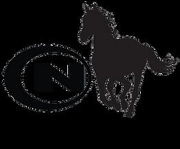 HorseProgram-Tumbler.png