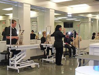 Attention_ Nash students starting to train to be all you can be at Nash Academy September