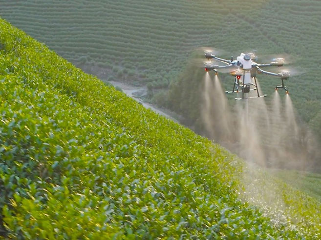 dron-agrario-DJI-t20-3.jpg