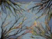 LIGHTENING OVER TREES 2.jpg