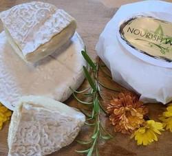 Artisan Brie
