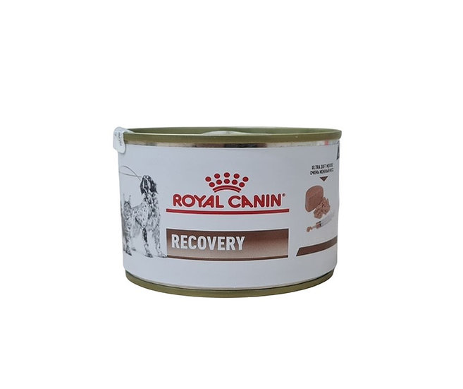 RECOVERY ROYAL CANIN / 195 G