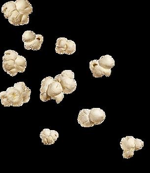 animation pop corn