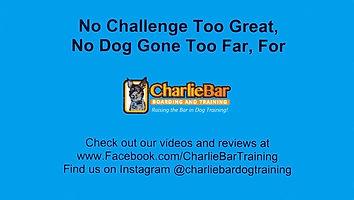 CharlieBar2.jpg