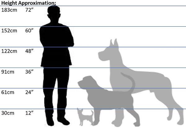 Height-Comparison.JPG